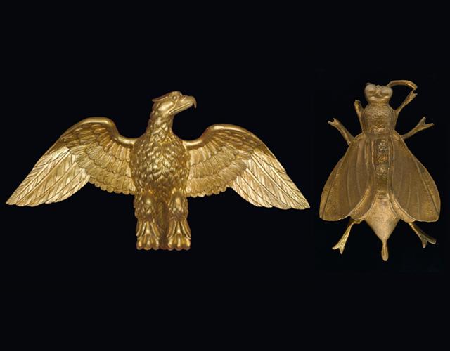 aguia e abelha
