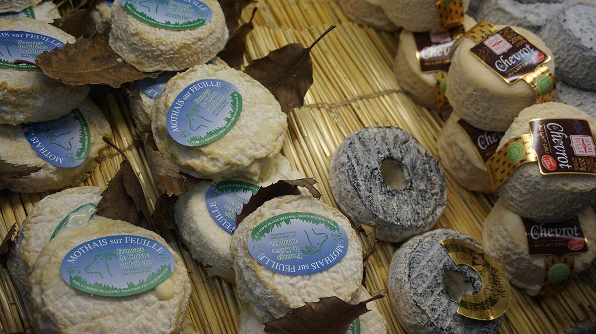 Salao da agricultura queijo cabra