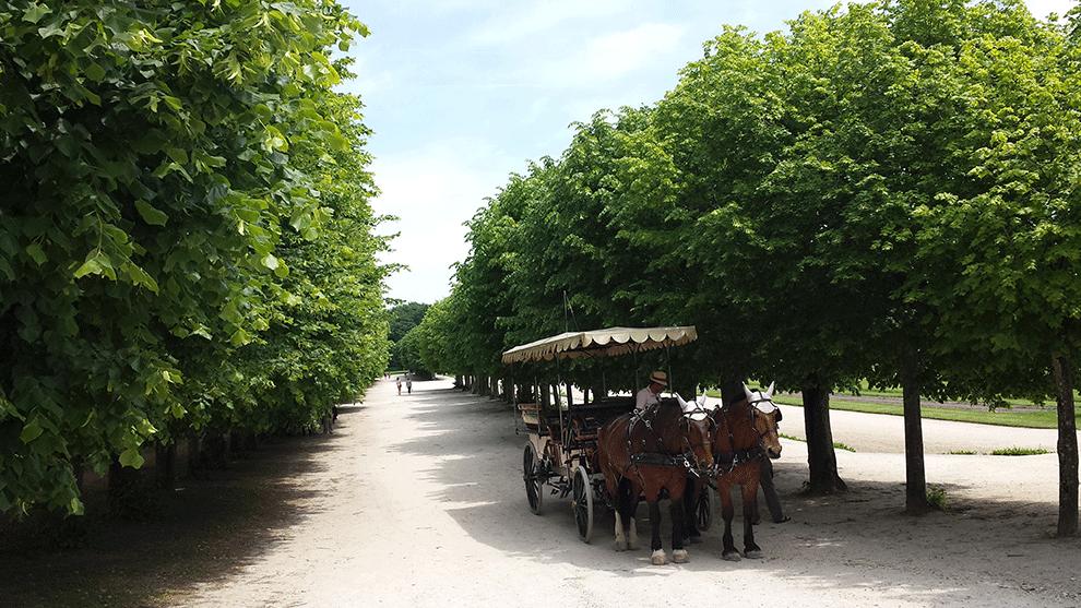 Fontainebleau-jardins