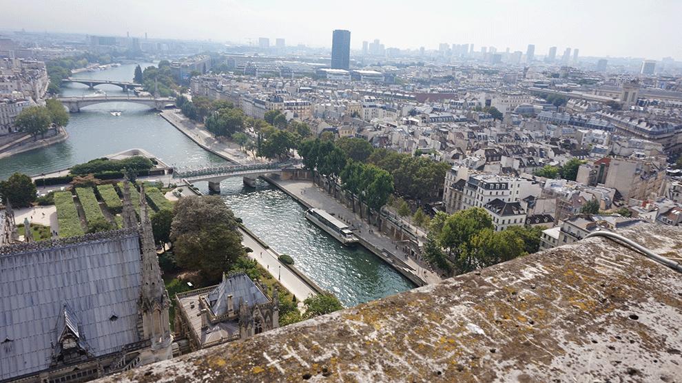 Notre-Dame-torre-sul-1