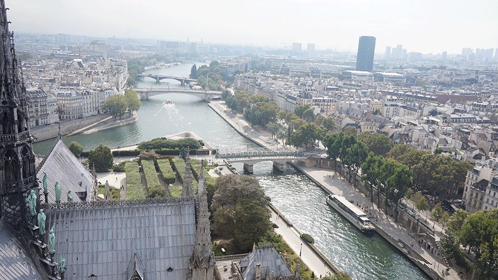 Notre-Dame-vista-torre-sul