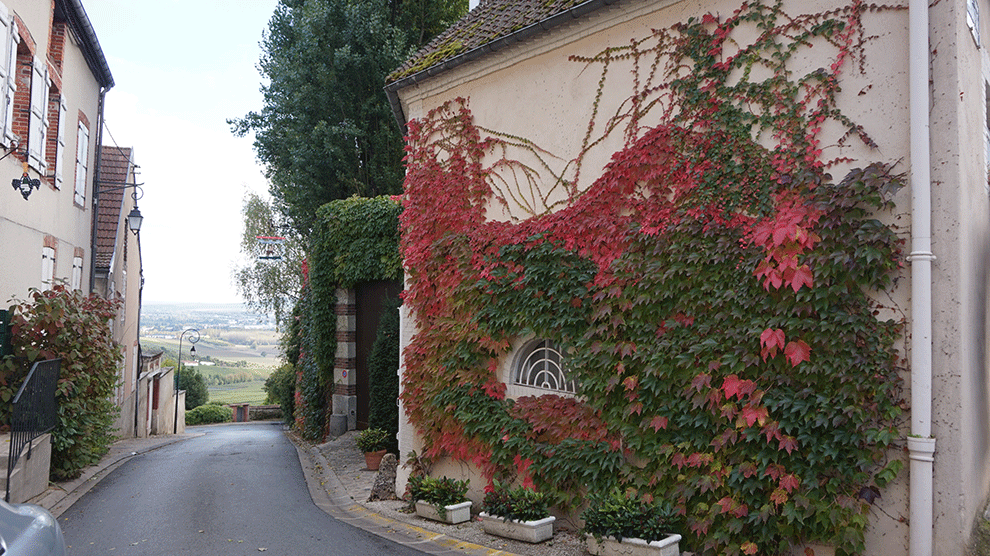 hautvillers-vilarejo-e-vista