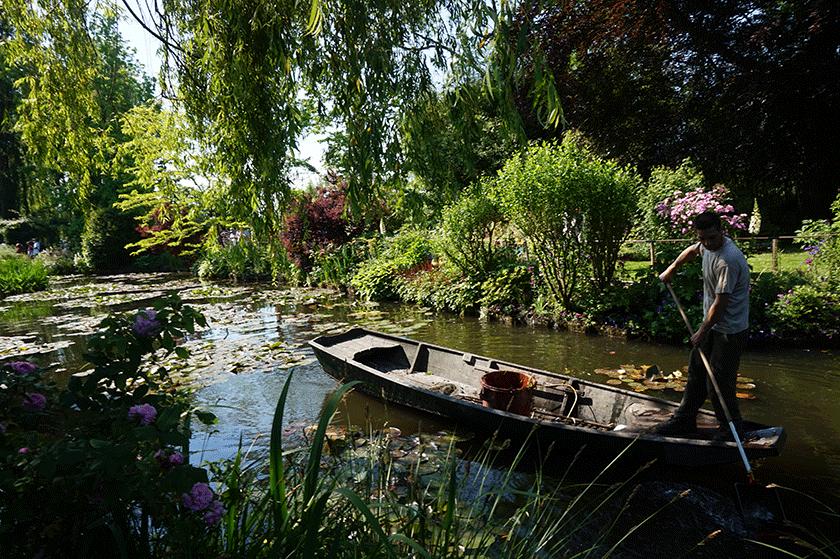 Monet jardineiro