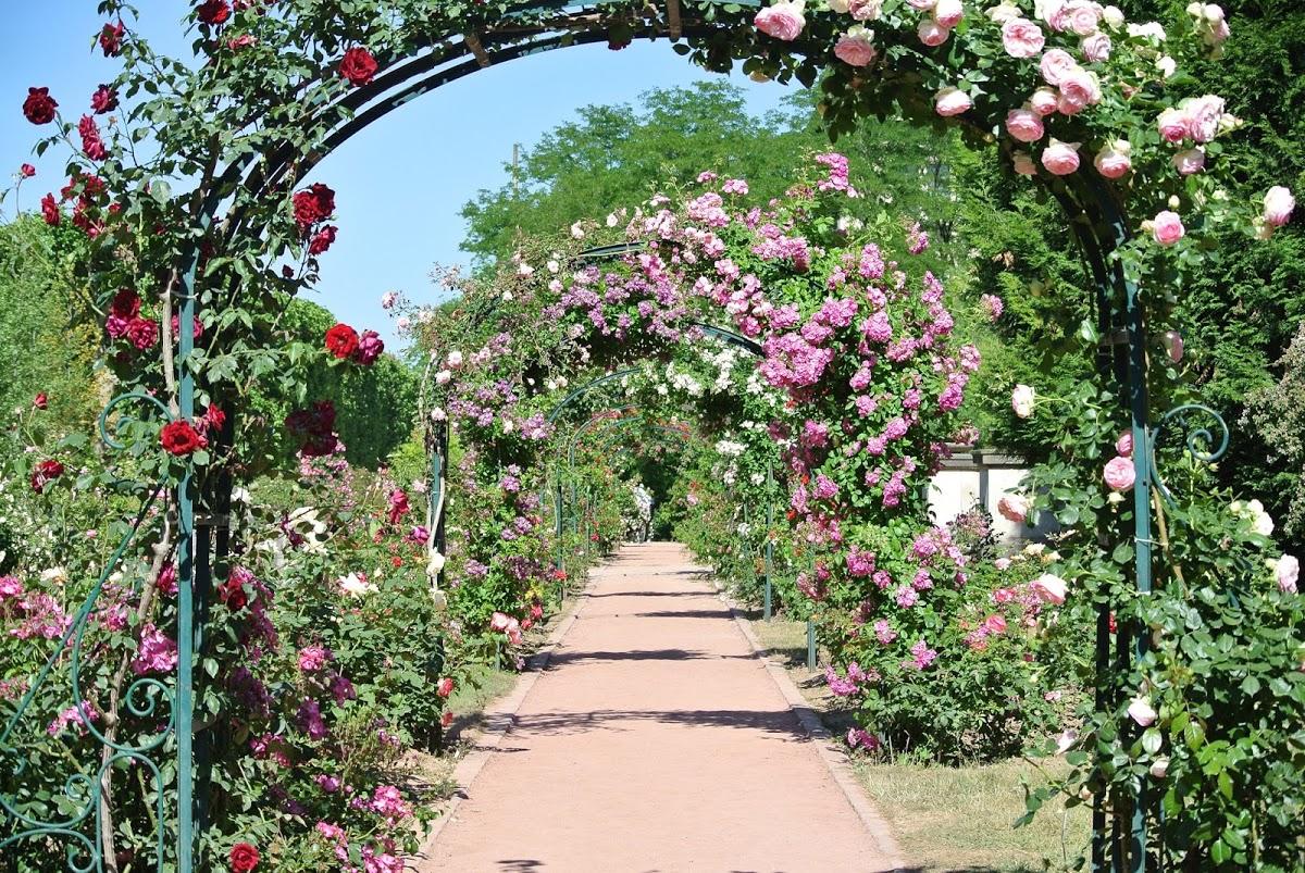 Jardins de Monet e o turismo na pandemia